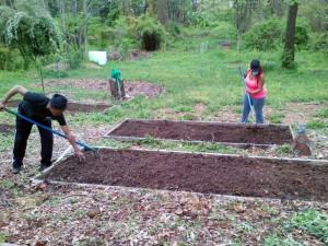Community Garden Preparation