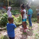 Kids Stop by Community Garden